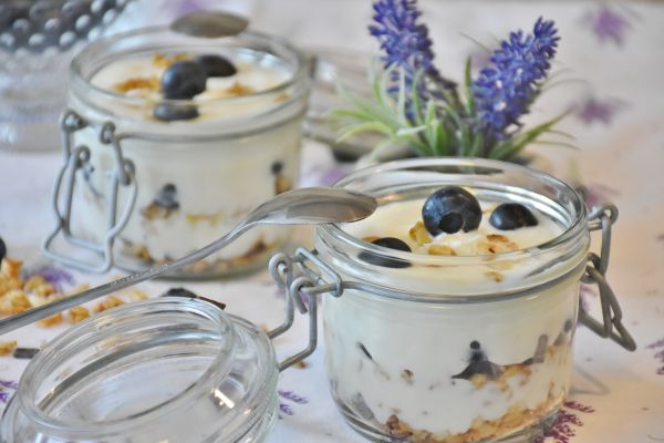 yogurt-1612787_1920