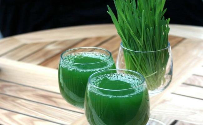 Zielona Żywność Green Ways