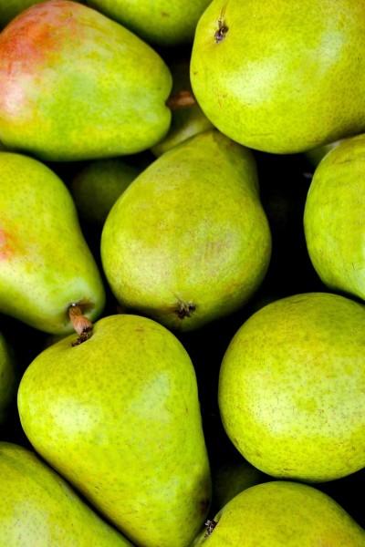 fruit-1534494_1920