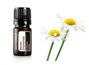 Chamomile-essential-oils