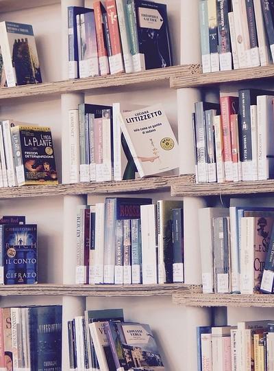 books-1617327_960_720