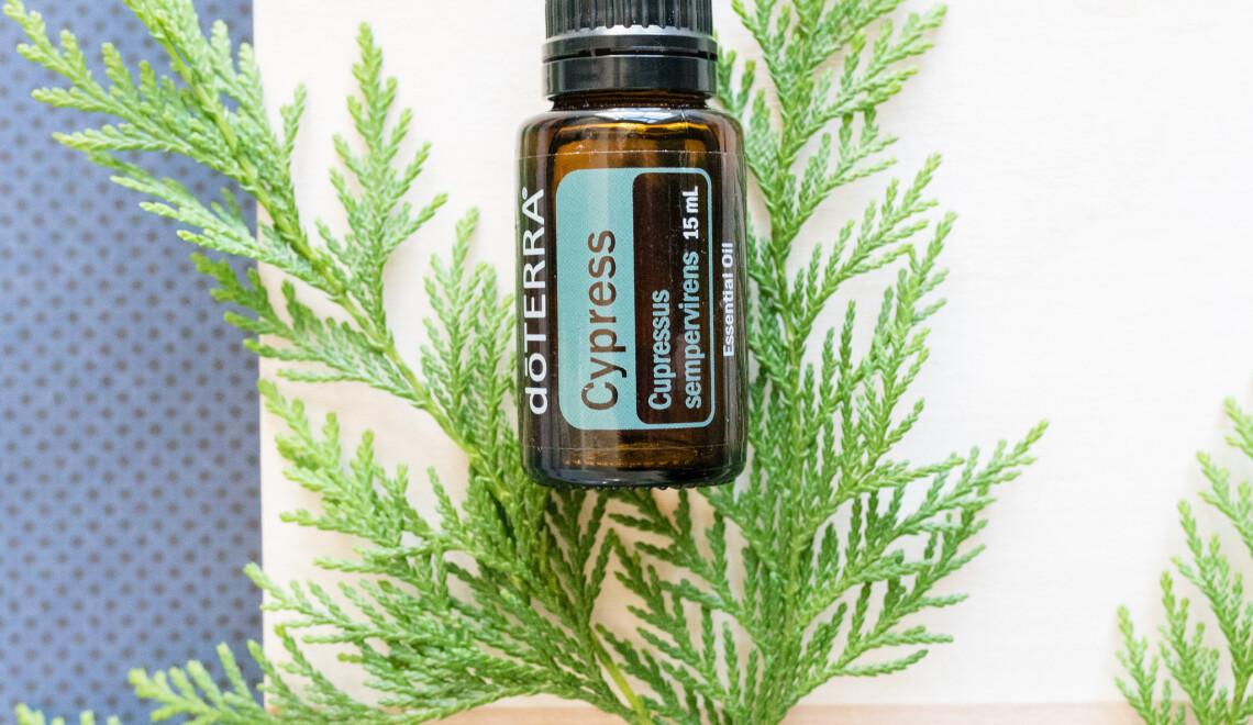 Toksyny, nerwy – weź olejek z cyprysu!